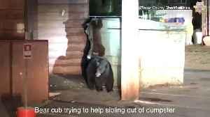 News video: VIDEO: Deputies Rescue Bear Cub That Got Trapped Inside Dumpster