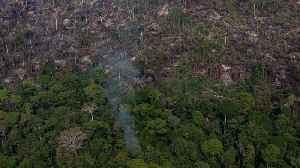 News video: In Brazil's Amazon, Fires Threaten The Environment And Way Of Life