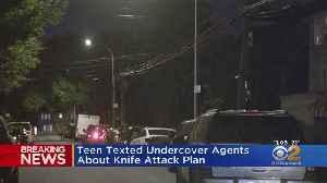 Teen Arrested In Queens Terror Plot [Video]