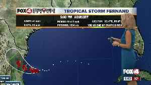 Tropical Storm Fernand develops in the western Gulf [Video]