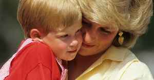 This Was Diana's Adorable 'Saturday Night Ritual' When Will And Harry Were Kids [Video]