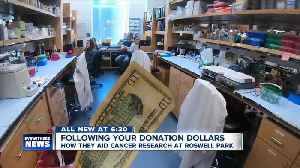 Follow the money: Where your research dollars go after you donate to Roswell Park [Video]