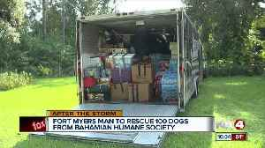 Fort Myers man to rescue 100 dogs from Bahamian Humane Society [Video]