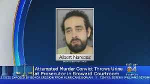 Florida Man Throws Bottle Of Urine On Prosecutor During Hearing [Video]