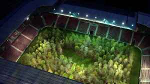 News video: There's A Forest Inside A Football Stadium In Austria