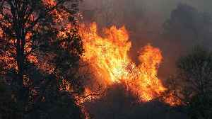 Australia's east coast battles more than 100 wildfires [Video]