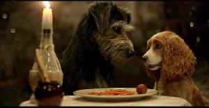 Tessa Thompson, Justin Theroux In 'Lady and the Tramp' First Trailer [Video]