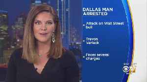 Dallas Man Arrested After Damaging New York's Charging Bull Statue [Video]