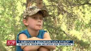 Colorado family talks about mountain lion attack on 8-year-old boy: 'It was just chewing on him.' [Video]