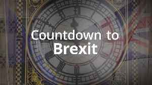 Countdown to Brexit: 53 days until Britain leaves the EU [Video]