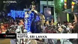 Elephants trample crowd at Sri Lankan pageant, injuring 17 [Video]