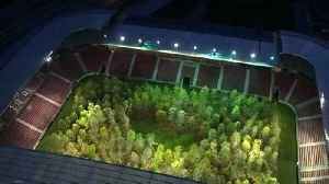 Forest in Austrian stadium opens to public with environmental message [Video]