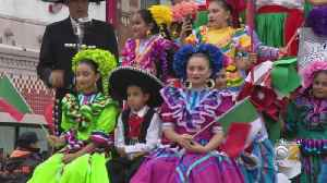 Crowd Turns Out for Mexican Independence Day Parade [Video]