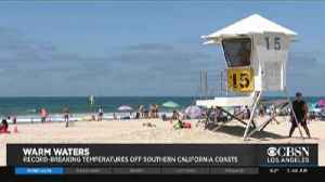 Oceans in SoCal Hit High Temp Record [Video]