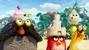 ANGRY BIRDS MOVIE 2 - Clip - Chuck's Sister [Video]