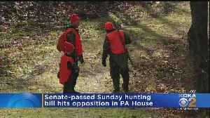 Senate-Passed Sunday Hunting Bill Hits Opposition In House [Video]