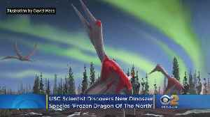 USC Scientist Discovers New 'Frozen Dragon Of The North' Dinosaur Species [Video]