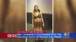 Person Of Interest In Custody In Shooting Death Of Dolton Mother Shot While Driving [Video]