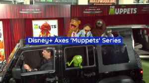 Disney Drops The 'Muppets' Series [Video]