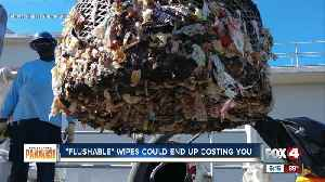 'Flushable' wipes aren't flushable, and they're causing thousands of dollars in damage [Video]