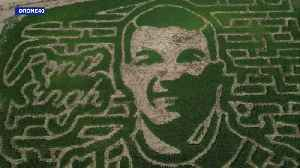 Corn Maze Honoring Slain Officer Set to Open in Northern California in a Few Weeks [Video]