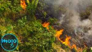 News video: 10 Things That Would Happen if the Amazon Rainforest Was Destroyed