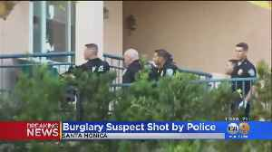Burglary Suspect Shot By Police After Standoff [Video]