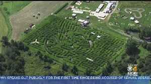 It Happens Here: Sterling's Mega Corn Maze [Video]