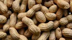 FDA Panel Recommends New Peanut Allergy Treatment [Video]