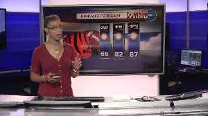 Your early Sunday forecast [Video]