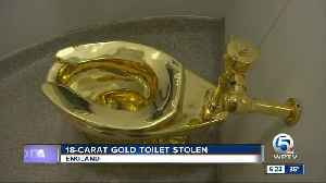News video: Solid gold toilet stolen from Blenheim Palace, birthplace of Winston Churchill
