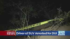 Driver of SUV Arrested For DUI [Video]