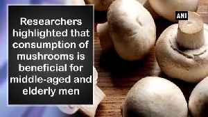 Consumption of mushrooms reduces prostate cancer risk Study [Video]