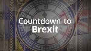 Countdown to Brexit: 45 days until Britain leaves the EU [Video]