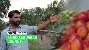 Green Heroes: The urban experience just got a sustainable upgrade [Video]