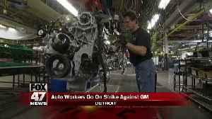 UAW workers on strike [Video]