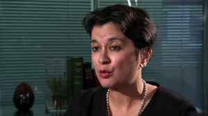 News video: Chakrabarti: Supreme Court must decide if PM abused power