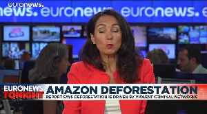 Defending the Amazon forest from deforestation 'can cost you your life' says new HRW report [Video]