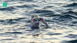 Sarah Thomas Becomes First Person To Swim Across The English Channel Four Times Without Stopping [Video]