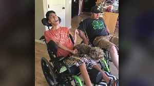 Man with Cerebral Palsy Devastated After Companion Dog Goes Missing [Video]