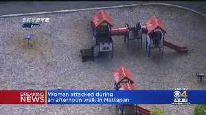 Woman Attacked During Afternoon Walk In Mattapan [Video]