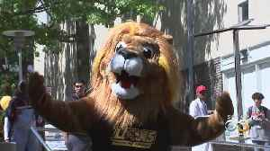 Community College Of Philadelphia Introduces New Mascot [Video]
