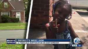 Toddler dies after closing car's power window on her head as her dad slept in front seat [Video]