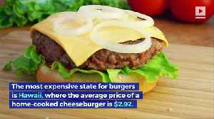 How Much Do Cheeseburgers Cost in the United States? (National Cheeseburger Day) [Video]