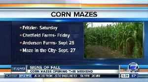 Corn mazes start opening this weekend [Video]