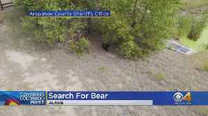 Search Continues For Bear Near E-470 and Arapahoe Road [Video]