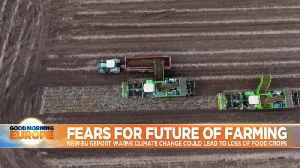EU warns climate change could wipe out crop production in Europe [Video]