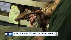 News 5 Cleveland Latest Headlines | September 18, 12pm [Video]