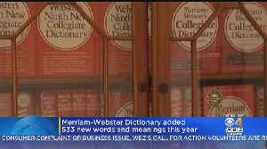 Merriam-Webster Dictionary Added 533 New Words And Meanings This Year [Video]