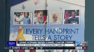 Hyundai presents $500,000 in grants to Johns Hopkins [Video]